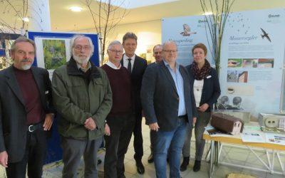 """Neue Ausstellungen gegen das Aussterben der Gebäudebrüter: """"Mehr Platz für Spatz & Co."""" und """"GartenVielfalt – ArtenVielfalt"""""""