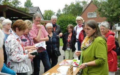 Johannistag- Tag der Mitsommerwende und der Kräuterbräuche